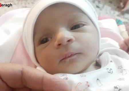 پیام تبریک مریم سنجابی به مناسبت تولد فرزند خانم و آقای علیزاده